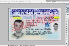 driving-licence-2-canada
